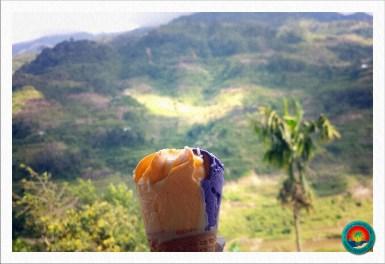 Ube-Mango Icecream