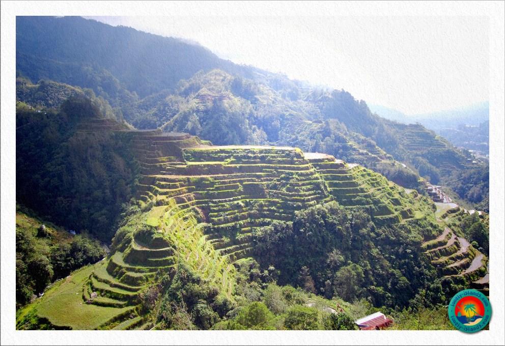 tolle Formationen der Reisterrassen