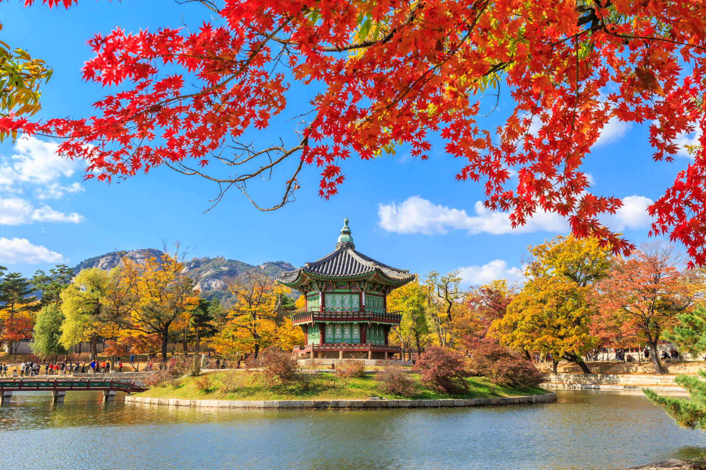 About South Korea South Korea Travel Lonely Planet