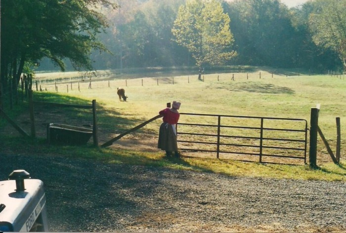 Farm-visit-page-pic-15