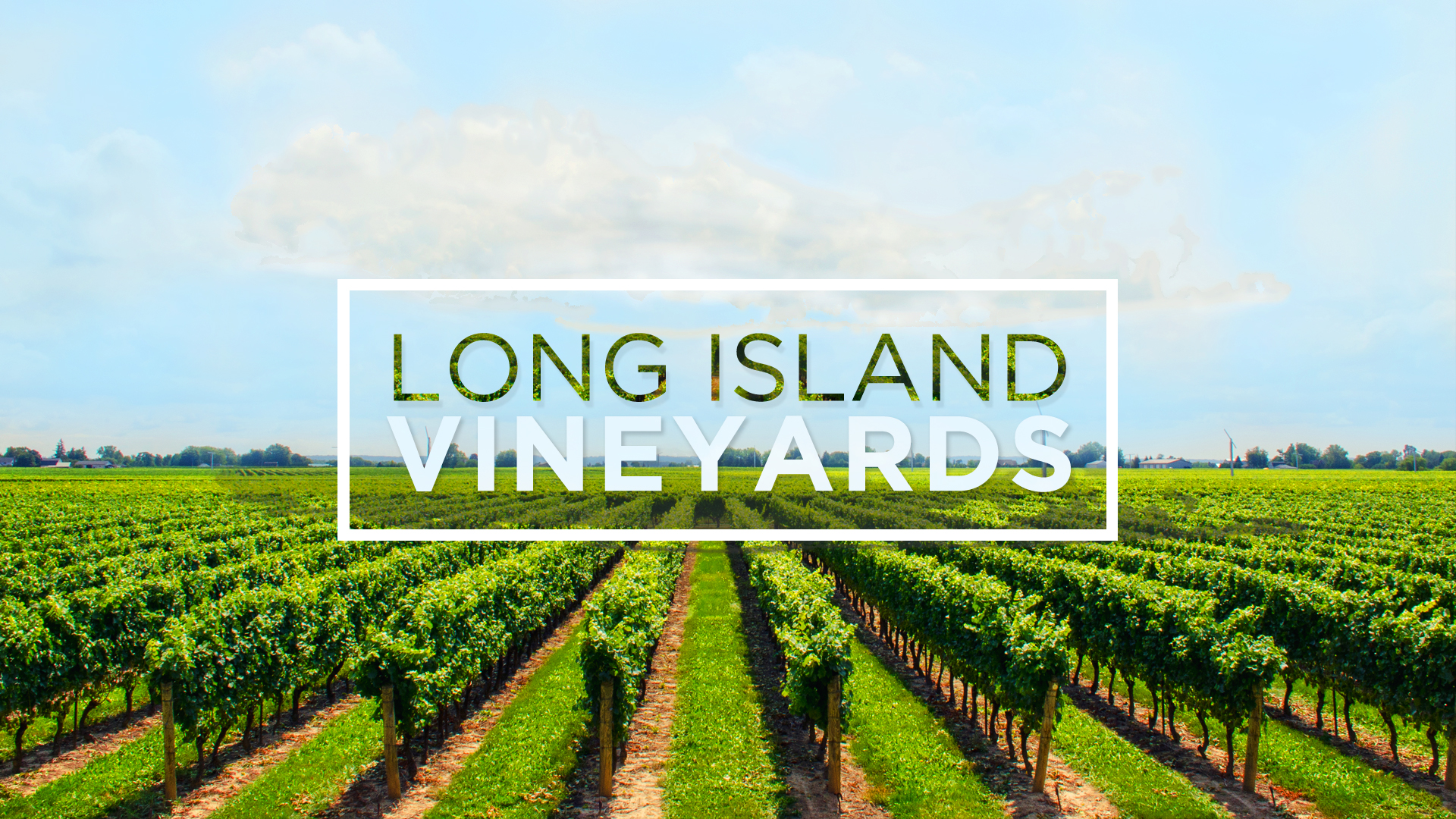 Shinn Estate Farmhouse Bed Long Island Wineries Vineyards Guide