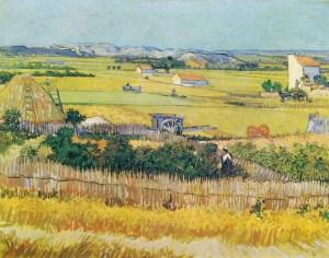Van Gogh  piana della Crau