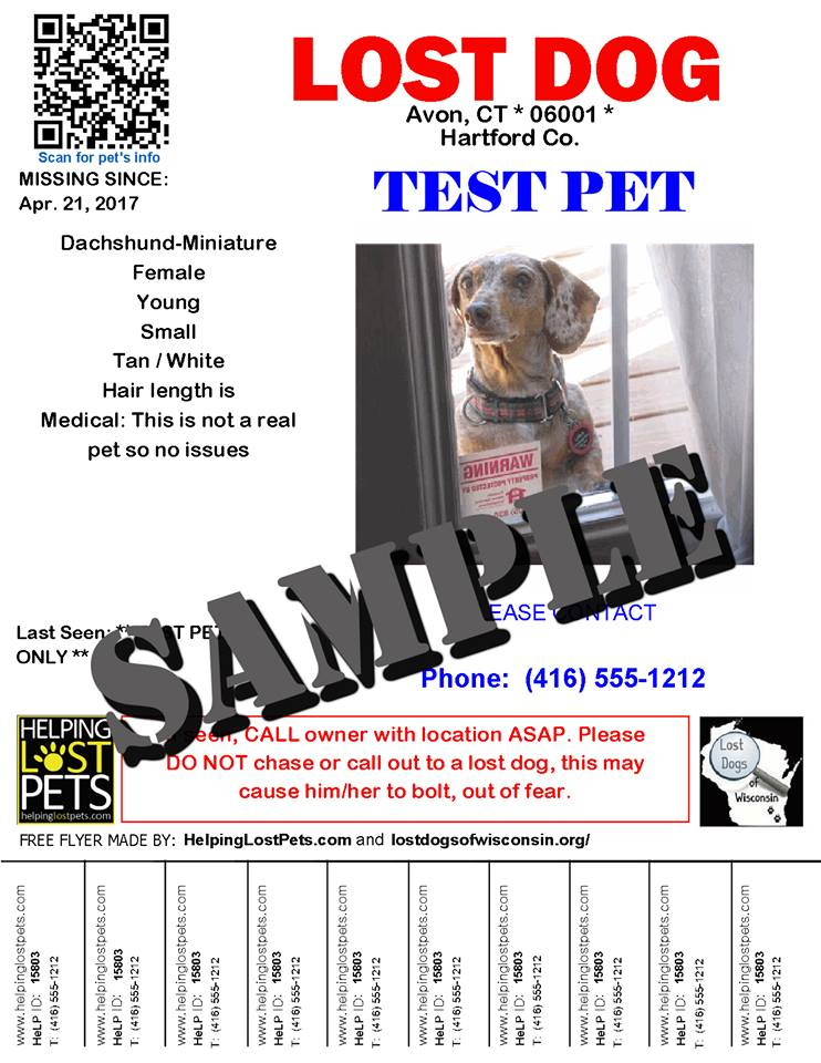 Perfect Lost Pet Flyer Template Photos - Examples Professional - lost pet flyer template free