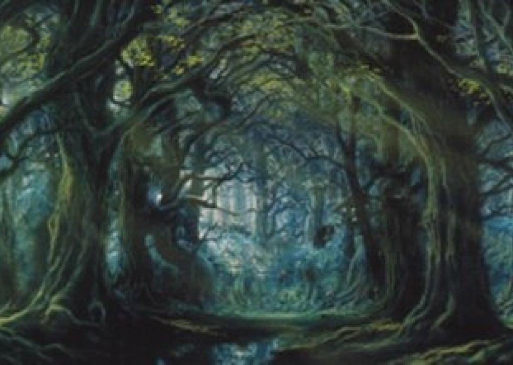 Anime Art Wallpaper Treebeard S Wellinghall Audio Atmosphere