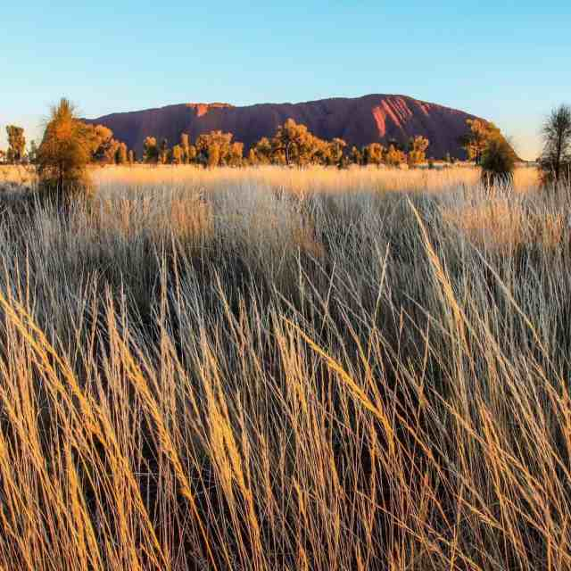 Are you an Aussie? Have you been to Uluru? Thereshellip