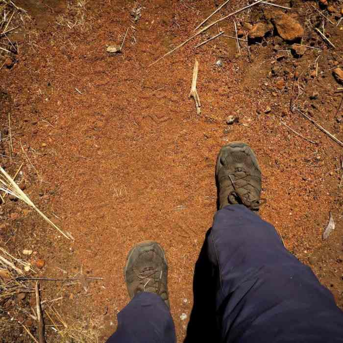 The Jatbula Trail walks you through 2 very different ecosystemshellip
