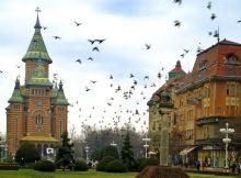 Timisoara1