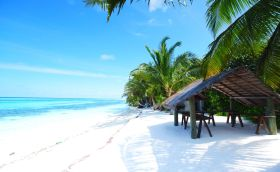 Credits: Tropical/Beach/Photo by Yellow/123RF