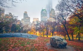 credits. NYC/Sborisov/CentralPark/ can stock photo
