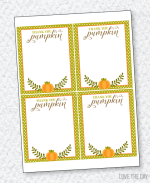 Hey Pumpkin Bridal Shower PRINTABLES:: Thank You Cards