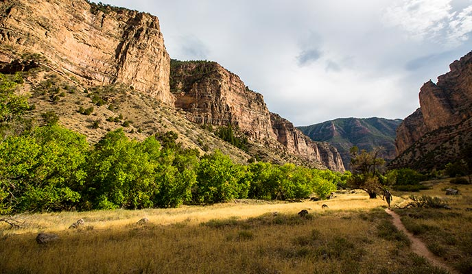The Jones Hole Trail takes hikers underneath dramatic sandstone cliffs. NPS/Jacob W. Frank