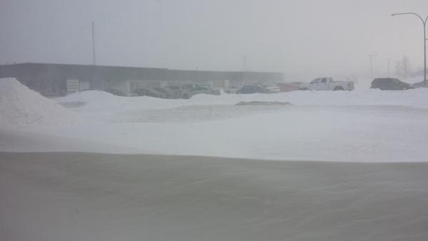 Winter in Morden 2015 (3)