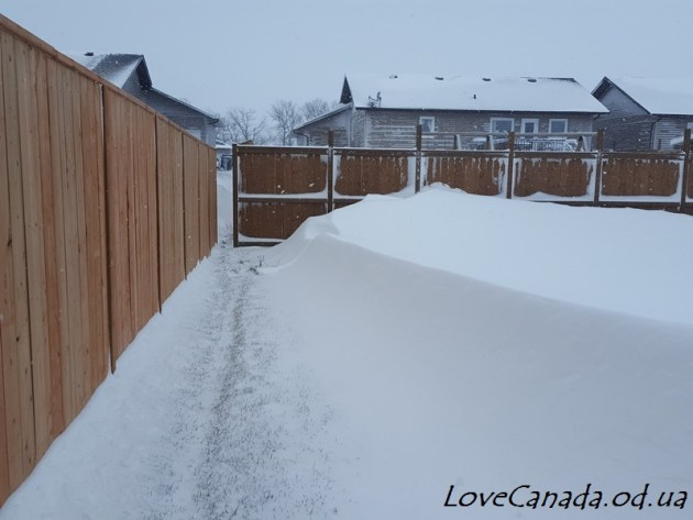 snow-storm-day-2-3