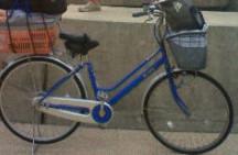 一日目昼自転車