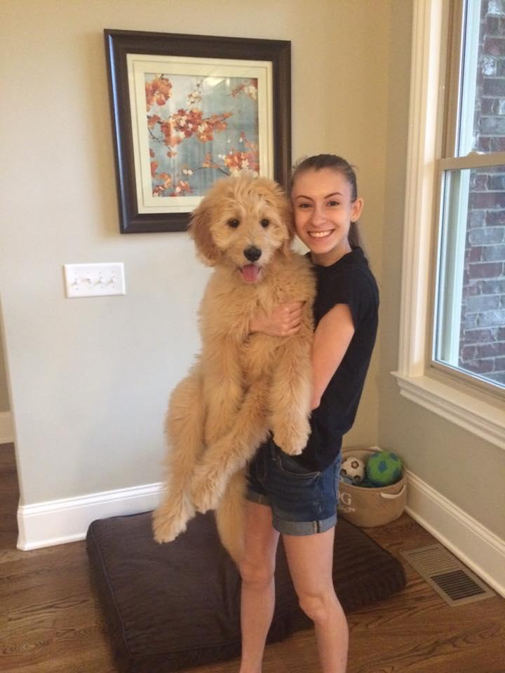 Danna's new puppy