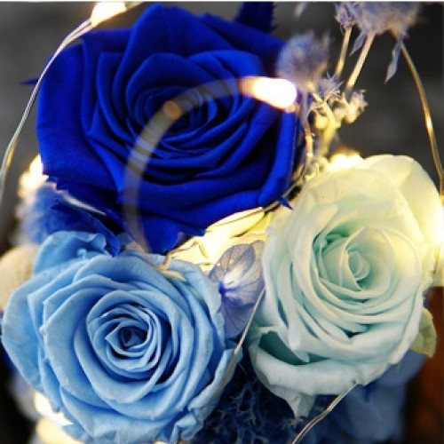 Piano Lamp Glass Roses Led Night Light