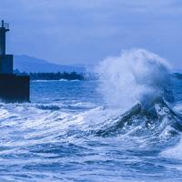 11月5日は「津波防災の日」です。