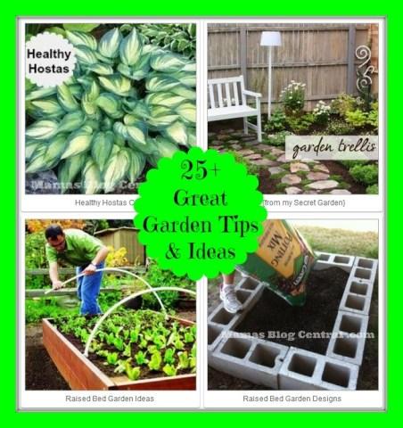 25+ Garden Tips