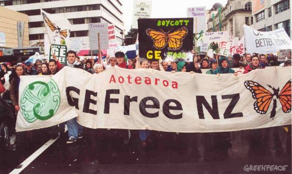 NZ GM field trial destroyed by activists