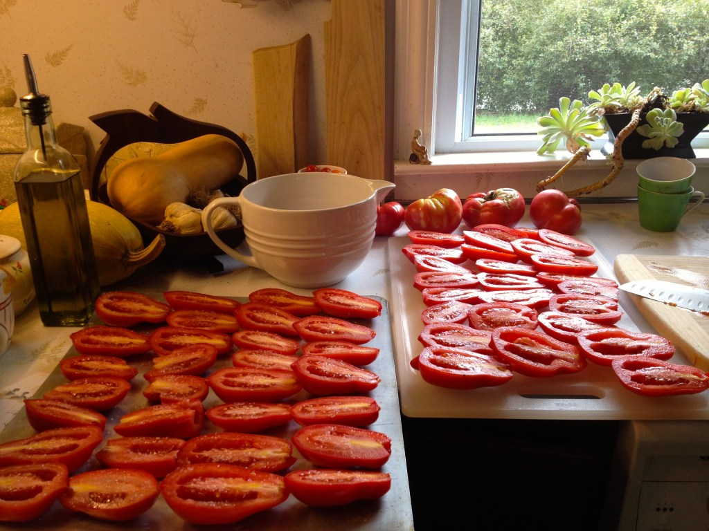 Salted tomatoes on baking sheets.