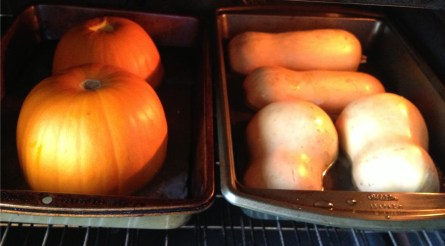Oven-roasting butternut squash and sugar pumpkins
