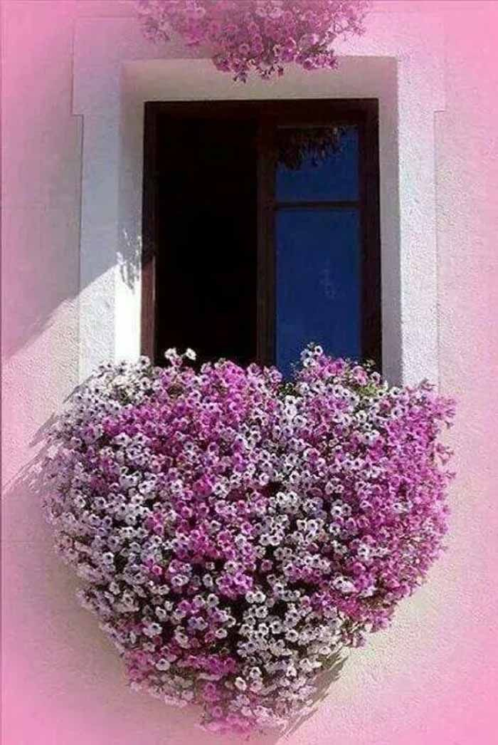 Pflegeleichte Balkonpflanzen Hanging Window Flower Basket In Greece Pictures, Photos