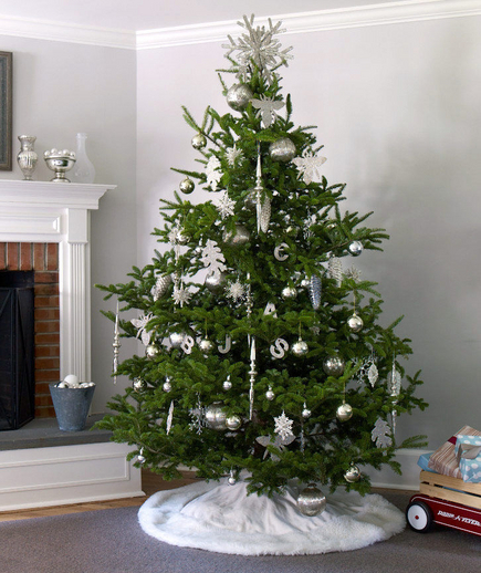 Na Stojaka Elegant Evergreen Christmas Tree Pictures, Photos, And