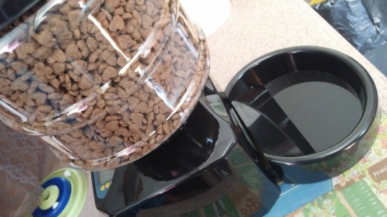 Automatic Timed Cat Pet Feeder