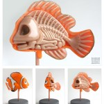 jason freeny moist production anatomy sculpture finding nemo