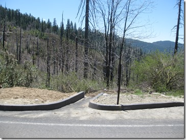 Yosemite 100