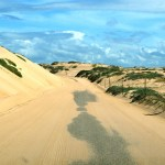 Guadalupe-Dunes-road.jpg