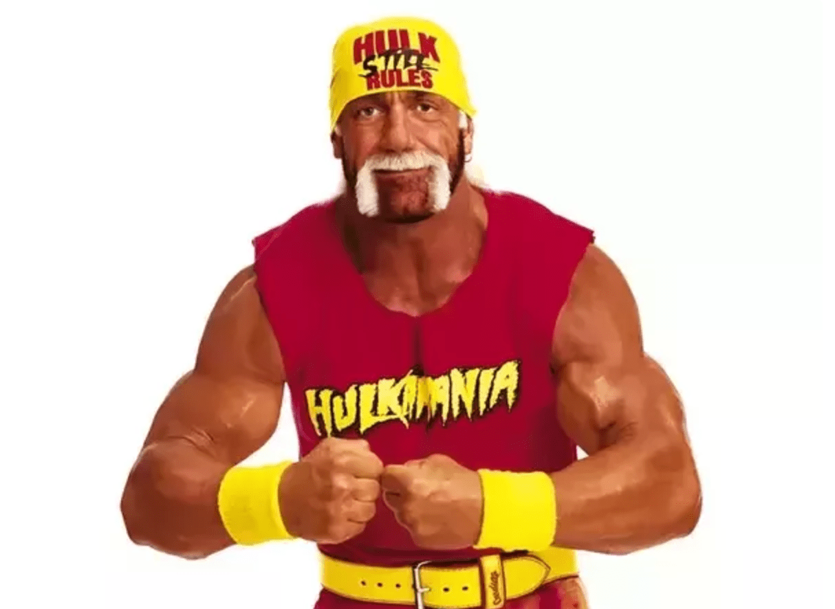 Wwe Hulk Hogan Wwe Why Do People Enjoy Watching Wwe Even Though It Is Fake