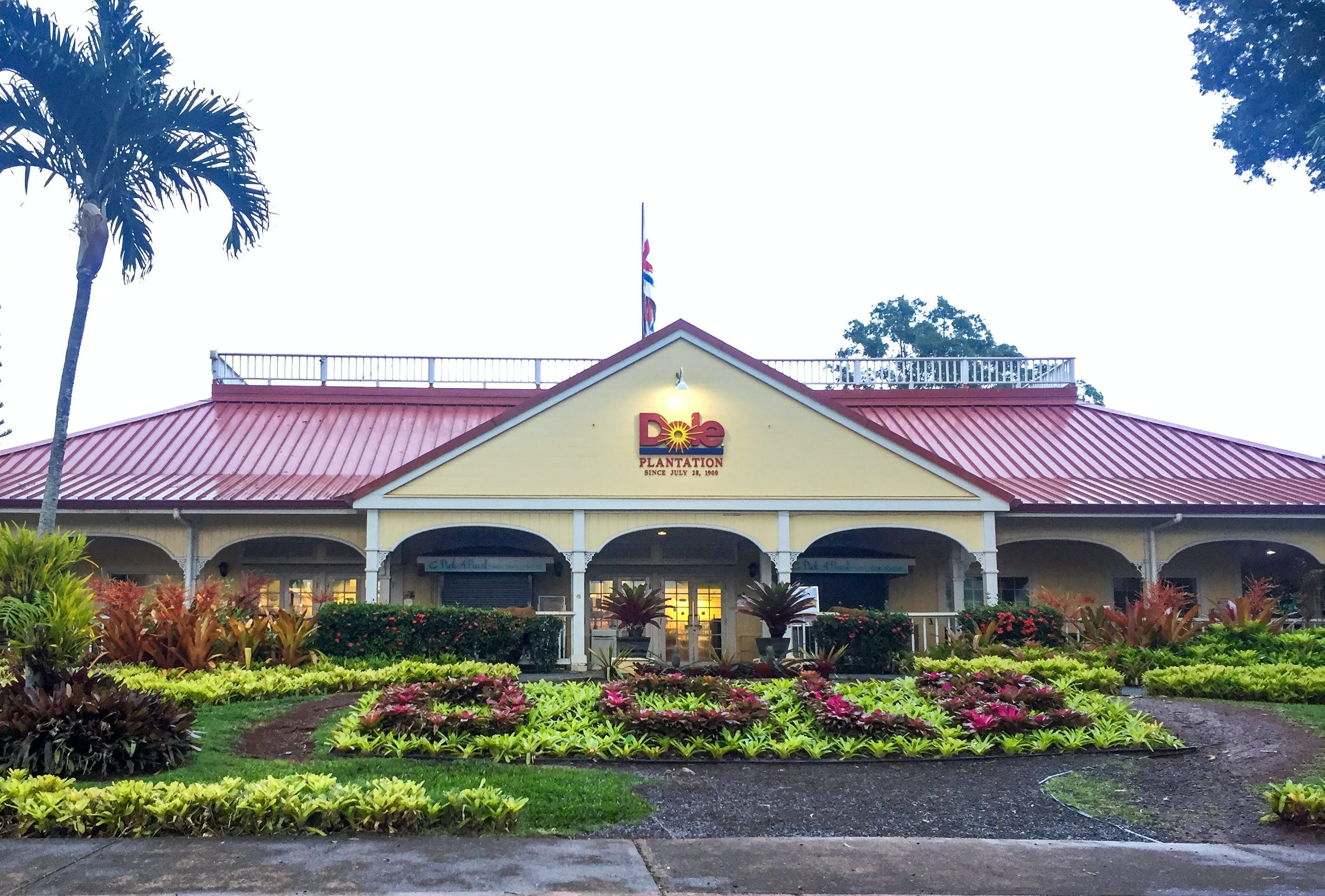 Dole Plantation Wahiawa Usa Attractions Lonely Planet