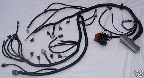 Ls1 Wiring Harness Labeled Electrical Circuit Electrical Wiring