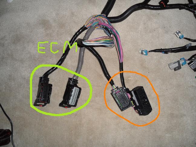95 camaro wiring vs 2000 trans am wiring - LS1TECH - Camaro and