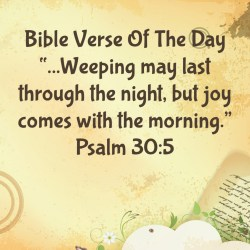 Small Crop Of Joy Bible Verses