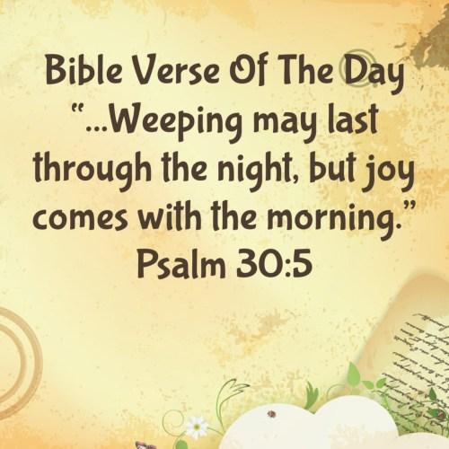 Medium Crop Of Joy Bible Verses
