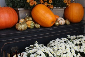 Fall Garden Decor