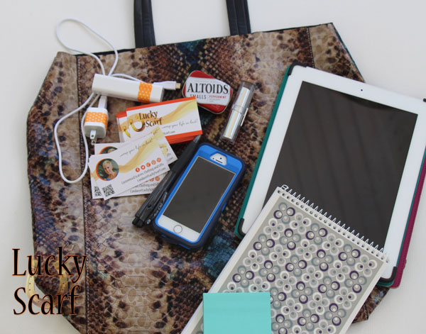 luckyscarf-blogger-bag