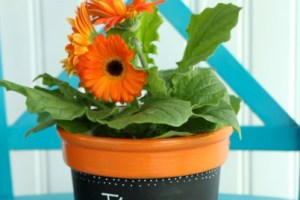 Upcycled Flower Pot