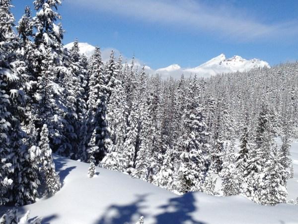 The stunning vista of the Cascades.