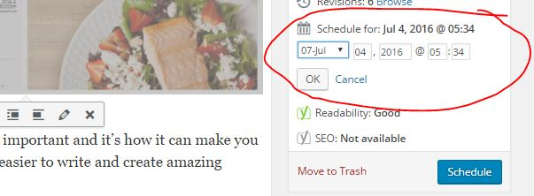wordpress, schedule