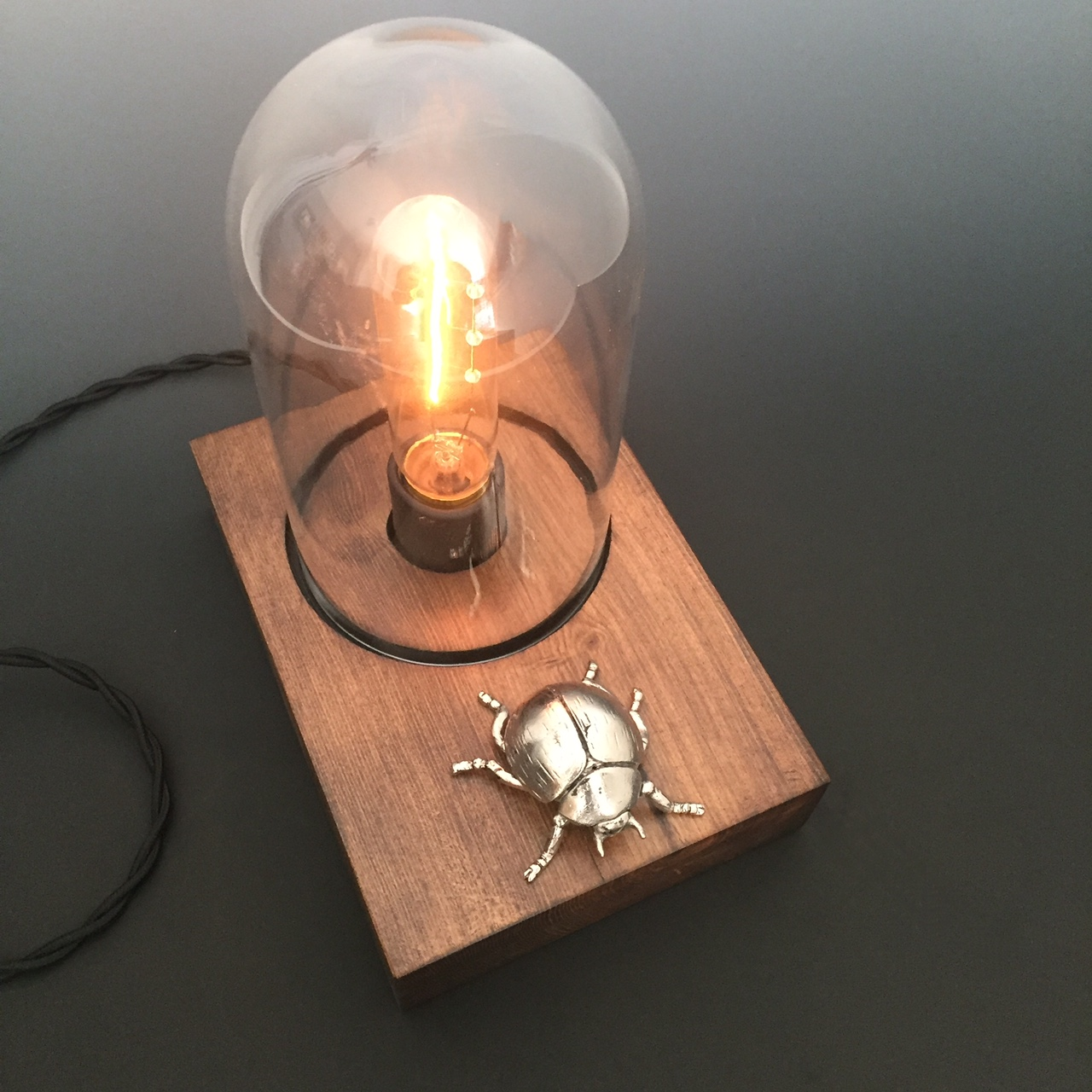 Glass Edison Lamp Scarab Beetle Edison Lamp