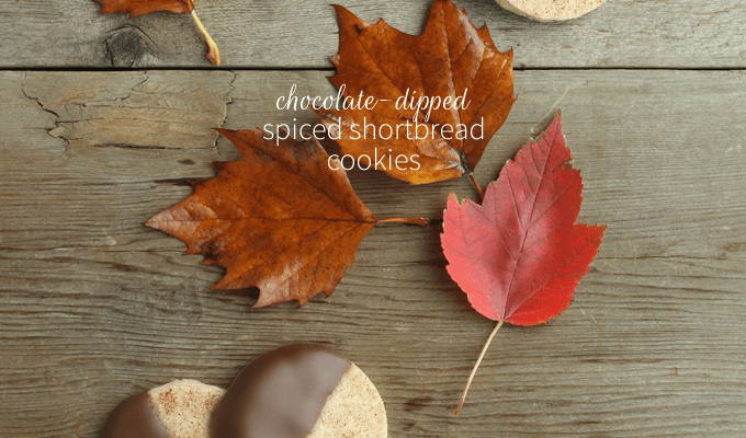 Chocolate-Dipped Spiced Shortbread Cookies