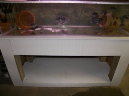 190 Gallon fish tank stand W/O center support   by