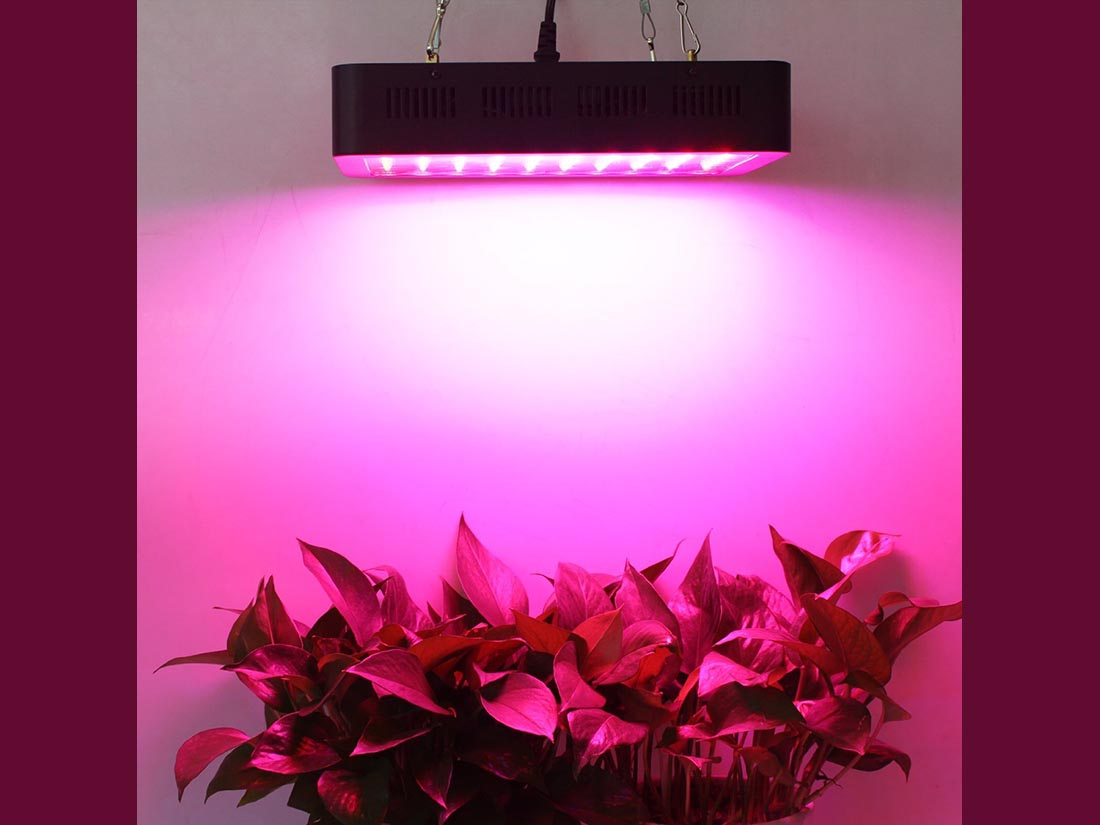 Grow Lights For Indoor Plants Lightmetunnel 300w Led Grow Light Review Help Indoor