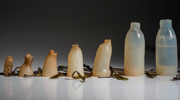 This Biodegradable Water Bottle Decomposes As Soon As It's Empty