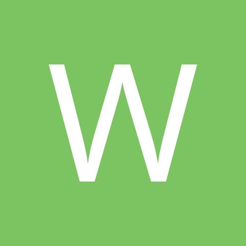 WiiwiiSims974