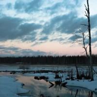 Talvitunnelmia Pohjois-Savosta