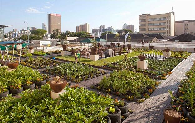 Rooftop Garden Durban Urban Rooftop Garden Designs Changing City Architecture